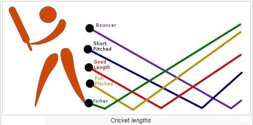 cricket-lengths