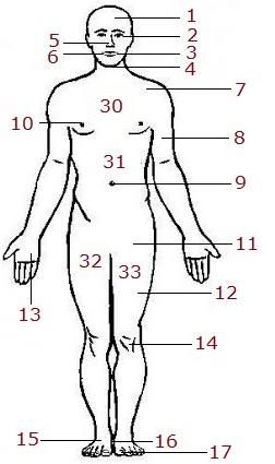 body-3a